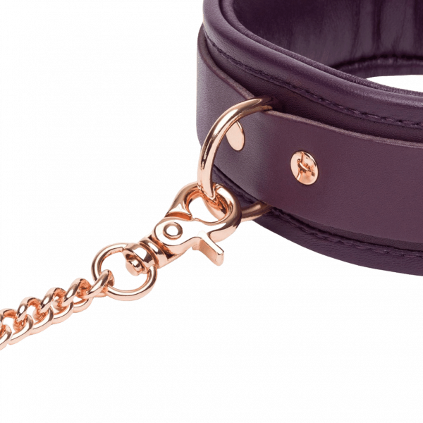 fsf leather collar lead closeup