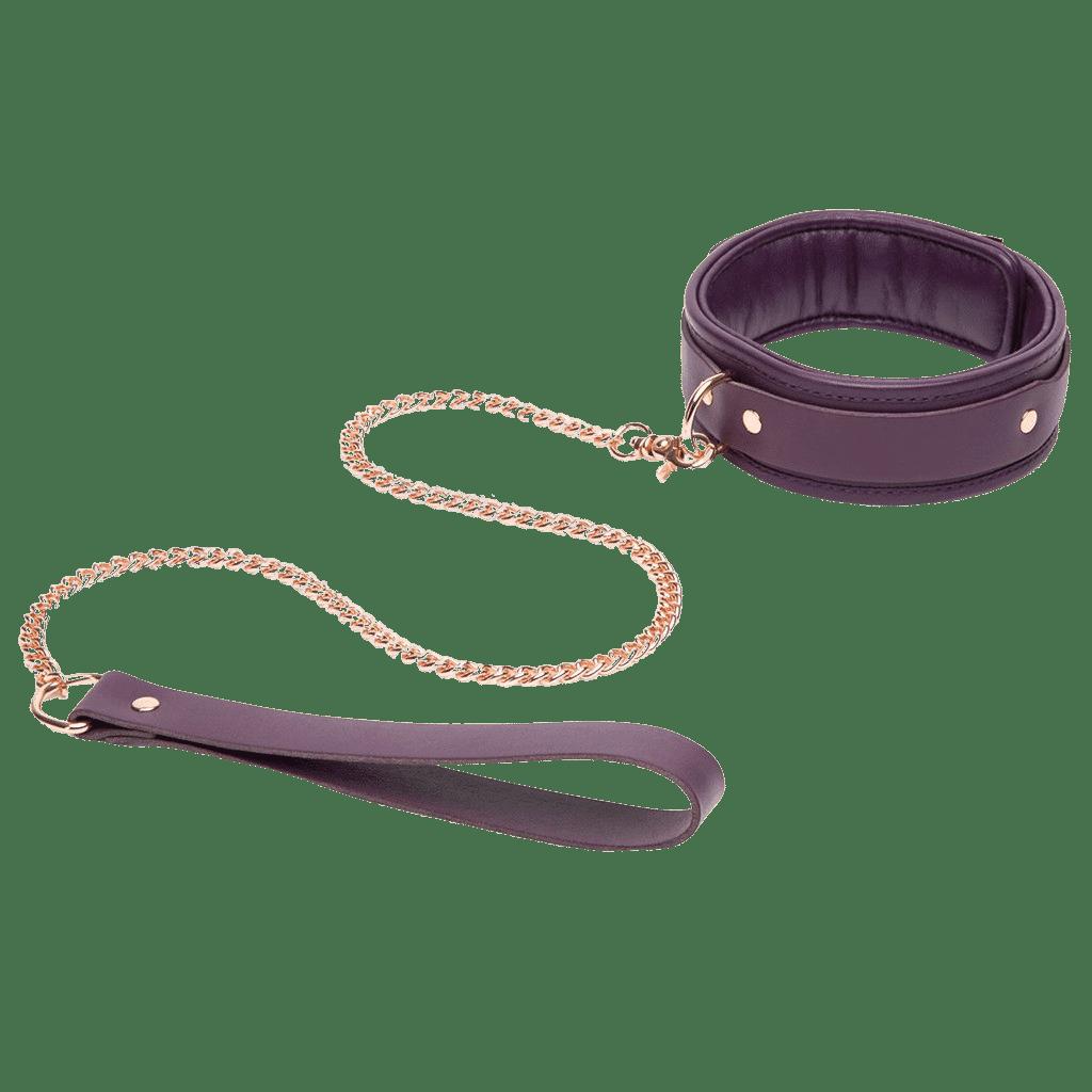 fsf leather collar lead main